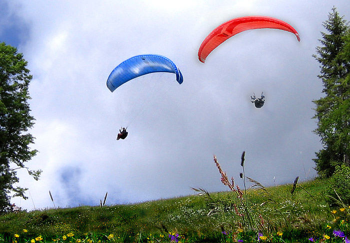Paragliders shortly after the start / Photo: Heinz Rieder