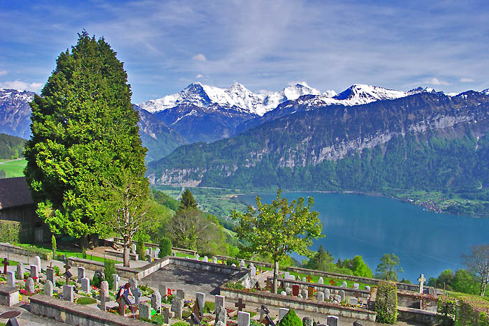 Cemetery with fantastic view of Lake Thun / Photo: Heinz Rieder